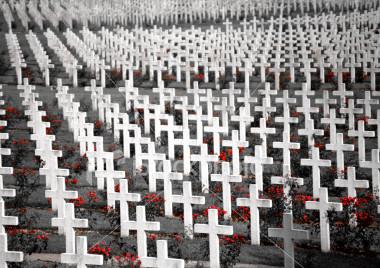 Flanders Field Crosses