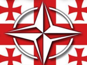 NATO-GEO-Drosha