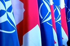 NATO-GeorgiaFlags