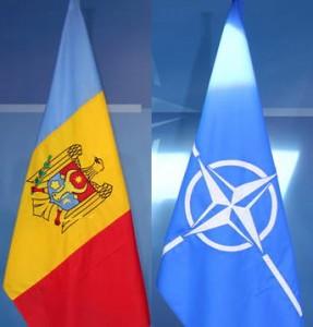 RM-NATO-287x300